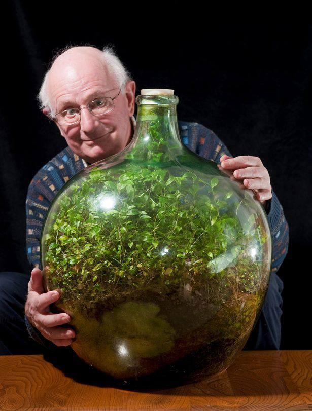 David Latimer und sein Flaschengarten
